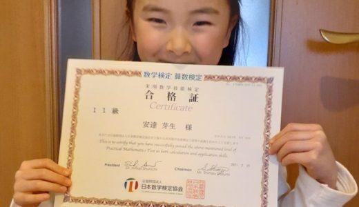 【先取り学習!】安達 芽生さん(年長で小学校1年生のレベルに合格)の算数検定 合格体験